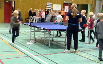PING PONG POWER i Laholm